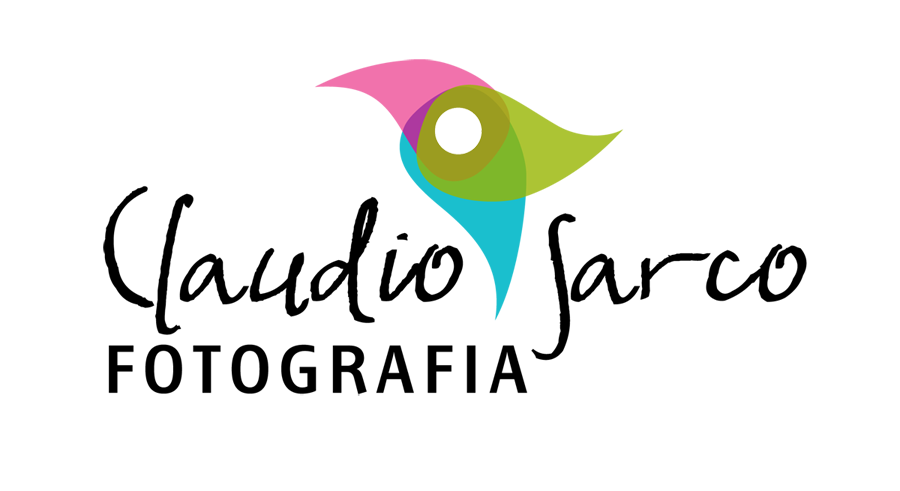 logo-CLAUDIO-SARCO-2014
